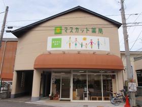 株式会社マスカット薬局 マスカット薬局 東古松店